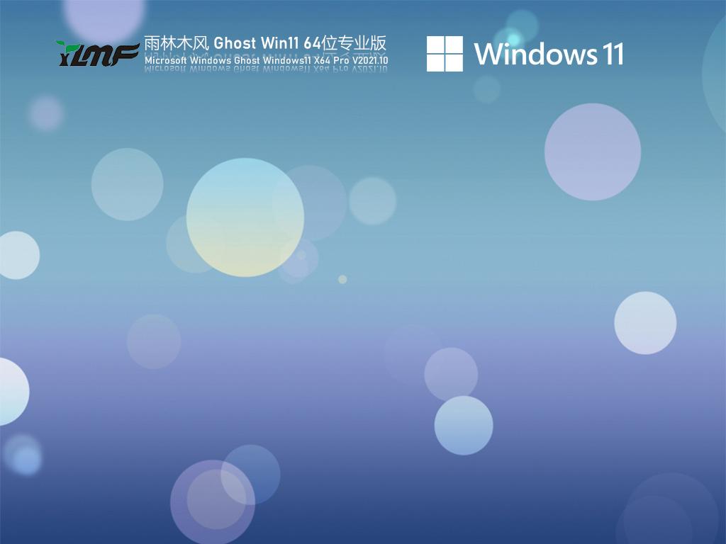 电脑公司 Ghost Win11 64位专业版 V2021.10